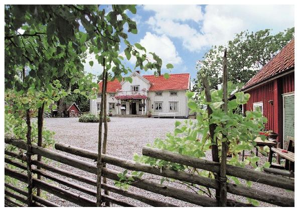 Gravlaxtartar, Dovhjortrostbiff från Östergötland & Fudgebrownie